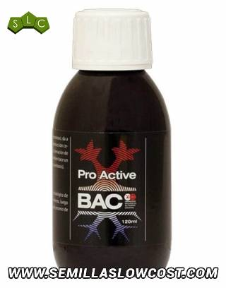 Pro-Active 120 ml Bac
