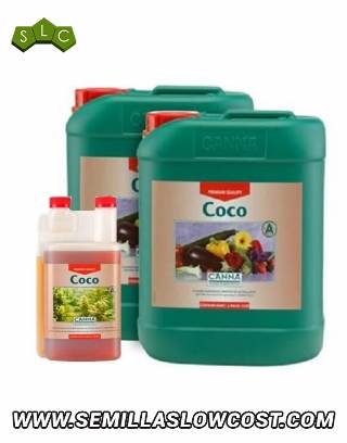 Coco Canna - Crecimiento y Floración
