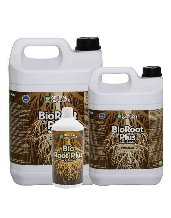 GO Bio Root Plus GHE