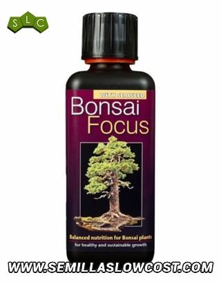 Bonsai Focus 300 ml Growth Technology