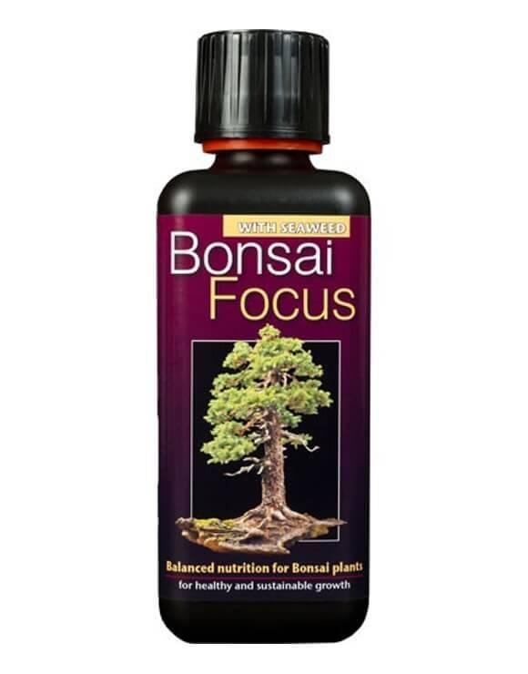 Bonsai Focus 300 ml Growth Technology