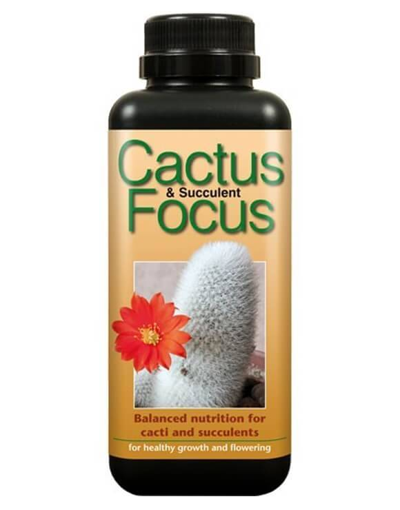 Cactus Focus 300 ml Growth Technology