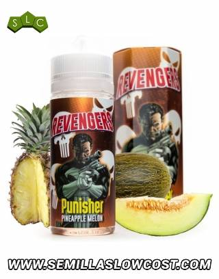 Punisher - Revengers
