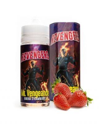 Mr. Vengeance - Revengers