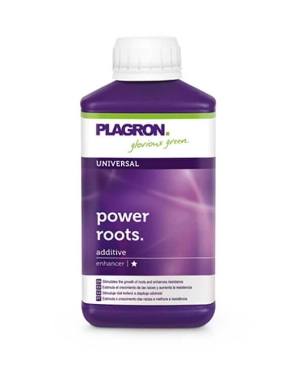 Power Roots Plagron