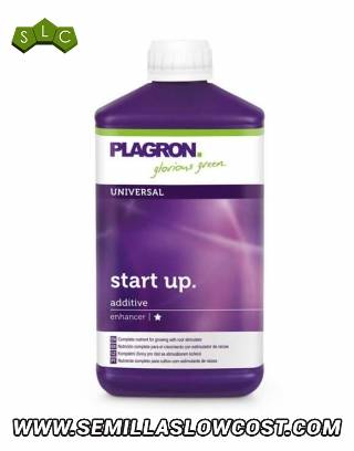 Star Up Plagron