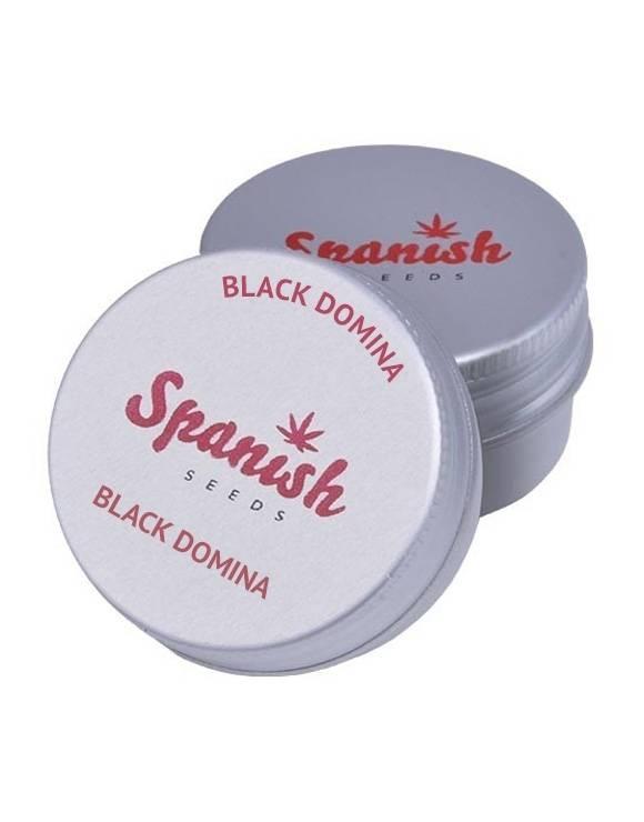 BlackDomina