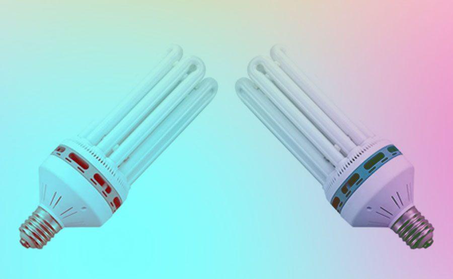 Fluorescente CFL