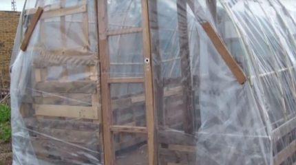 Portada del artículo para hacer un invernadero casero