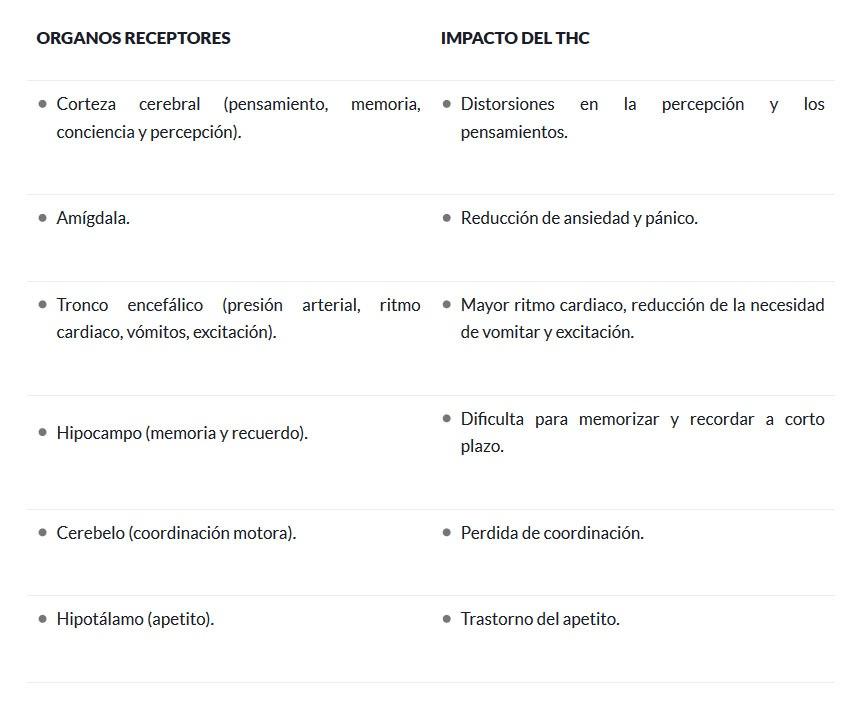Receptores cannábicos y el Thc