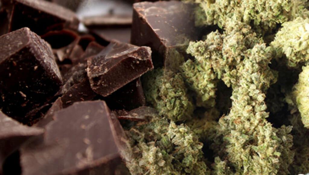 Chocolate y cogollos
