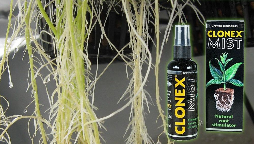 Clonex mist y raíces