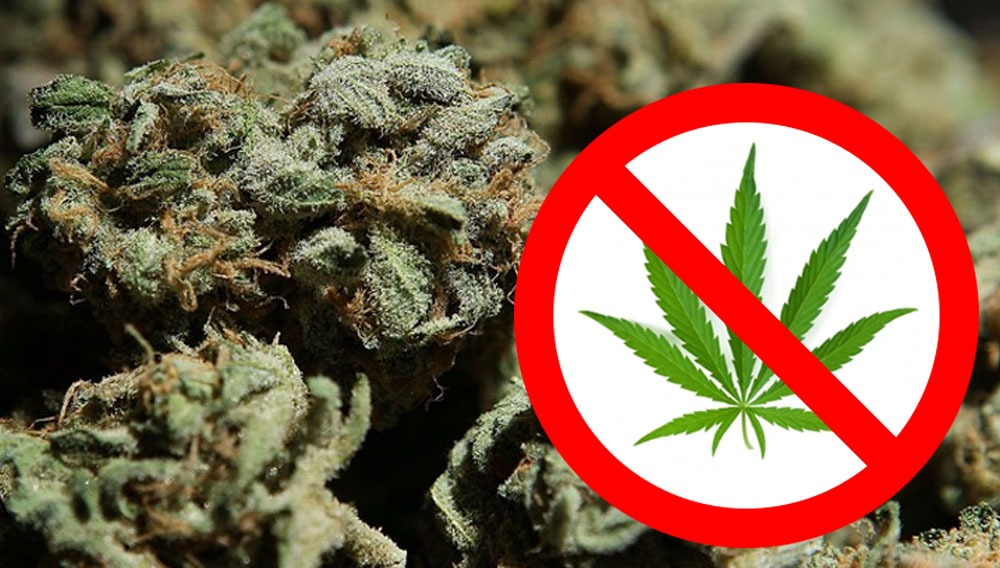 no fumar marihuana