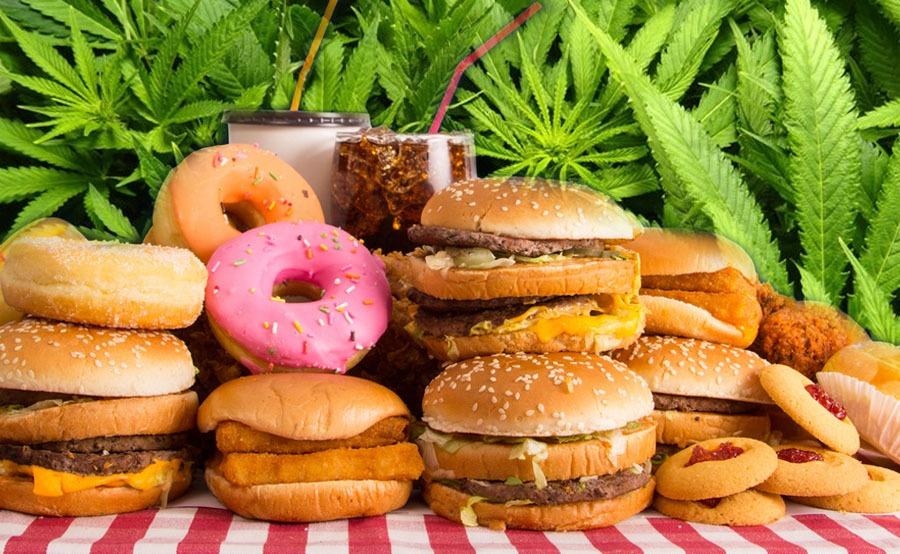 comida y marihuana