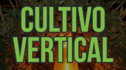 Portada del artículo sobre el cultivo en vertical