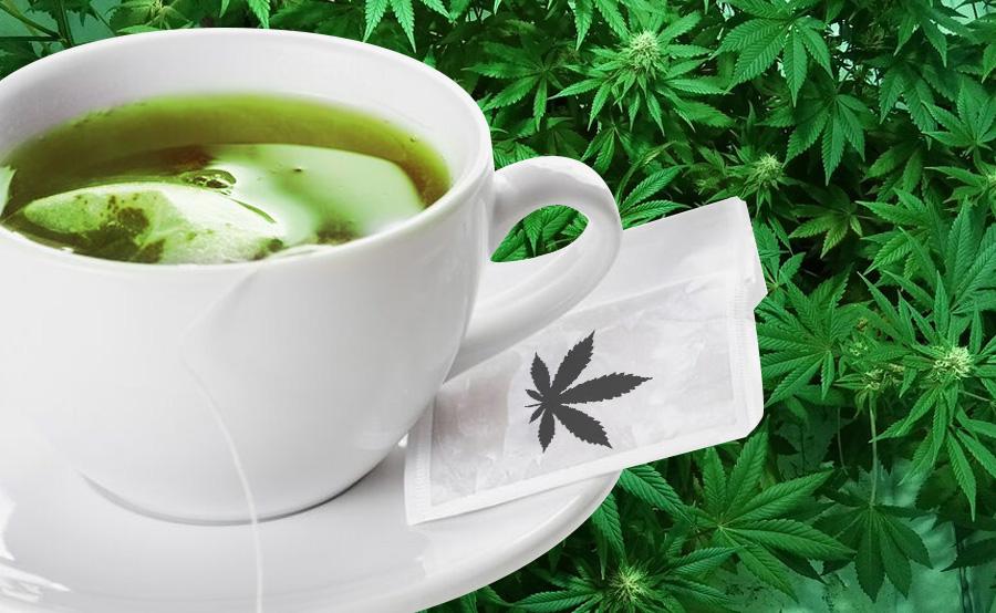 infusión marihuana