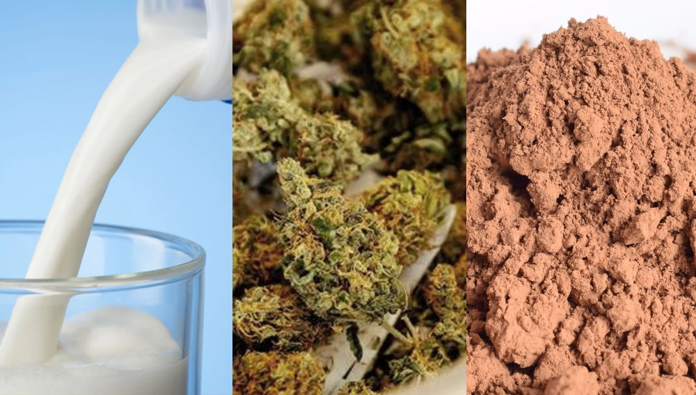 ingredientes chocoalte taza cannábico