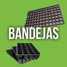 Bandejas
