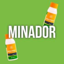 Minador