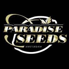 Paradise Seeds Autoflorecientes