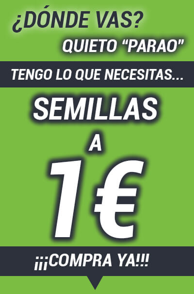 Semillas de marihuana a 1 Euro