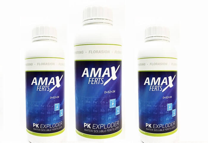 Amax PK Exploder