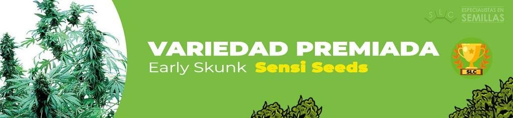 Early skunk de sensi seeds