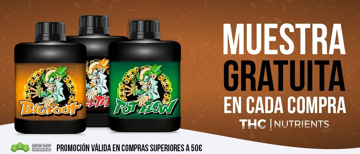 Regalo THC Nutrients